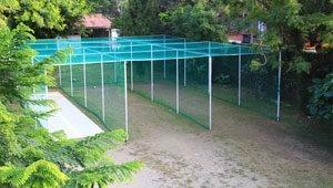 cricket_court